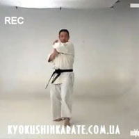 All Japan Kyokushin Union - Видео ката киокушин карате
